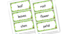 plants words