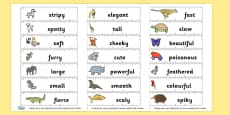 Animal Adjectives Cards