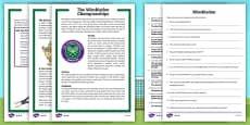 KS2 Wimbledon Differentiated Reading Comprehension Activity