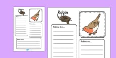 Robin Factfile Activity Sheet
