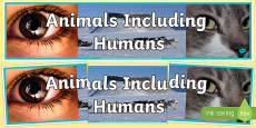 Animals Including Humans Photo Display Banner