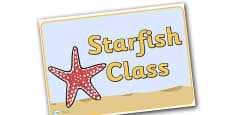 Starfish Group Display Posters
