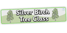 Birch Tree Themed Classroom Banner Silver Birch