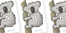 A-Z Alphabet on Koalas