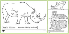 Endangered Animals Colouring Sheets