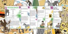 Wild Animals Talking Box Activity Pack