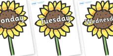 Days of the Week on Sunflowers