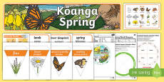 New Zealand Spring Activity and Display Pack
