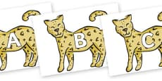 A-Z Alphabet on Leopards