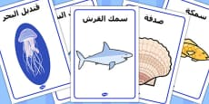 Under the Sea Display Posters Arabic