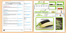 EYFS Discovery Sack Plan and Resource Pack to Support Teaching on Oliver's Vegetables