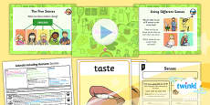 Science: Animals Including Humans: Senses Year 1 Lesson Pack 2
