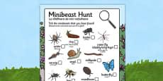 Minibeast Hunt Sheet Romanian Translation