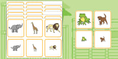 Matching Size Activity to Support Teaching on Dear Zoo