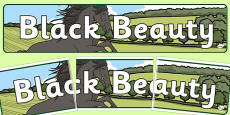 Black Beauty Display Banner