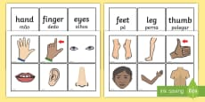 Parts Of The Body Word and Picture Matching Cards English/Portuguese