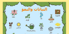 Plants and Growth Topic Word Mat Arabic