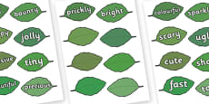 Wow Words on Leaves for Display Tree
