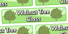 Walnut Tree Themed Classroom Display Banner