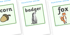 Picture Cards to Support Teaching on Percy The Park Keeper