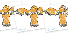 Months of the Year on Owls
