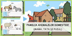 Male/Female Farm Animals and Their Young Names PowerPoint Romanian