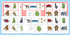 Matching Mat SEN to Support Teaching on The Bad Tempered Ladybird