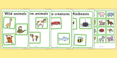 Sea Creatures Farm Animals Wild Animals And Minibeasts Sorting Activity No Visual Support
