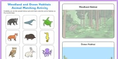 Woodland and Ocean Habitats Animal Sorting Activity Sheet