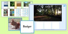 Animals Habitat Matching Word Card Game