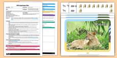 EYFS Safari Binoculars Adult Input Plan and Resource Pack