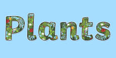'Plants' Display Lettering