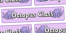 Octopus Class Display Banner