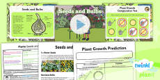 Science: Plants: Seeds and Bulbs Year 2 Lesson Pack 2