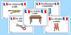 French Classroom Posters Portuguese Translation