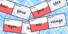 French Body Parts Loop Cards