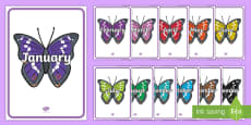 Months of the Year on Butterflies