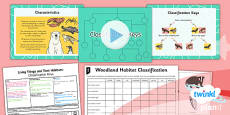 Science: Living Things and Their Habitats: Classification Keys Year 4 Lesson Pack 4