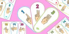 British Sign Language 0-20 Number Fan (Signer's View)