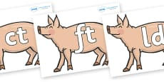 Final Letter Blends on Pigs to Support Teaching on Pig in the Pond