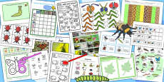 KS1 Minibeast Activity Pack