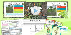 PlanIt - Geography Year 3 - Rainforests Lesson 4: Life in the Rainforest Lesson Pack