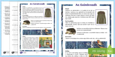 An Geimhreadh 5th/6th Class Differentiated Reading Comprehension Activity