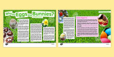 Why the Eggs and Bunnies? Article