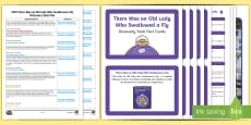EYFS There Was an Old Lady Who Swallowed a Fly Discovery Sack Plan and Resource Pack
