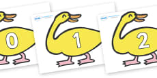 Numbers 0-31 on Yellow Duck to Support Teaching on Brown Bear, Brown Bear