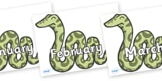Months of the Year on Snakes