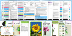 EYFS Plants and Growth Themed Adult Input Planning Pack