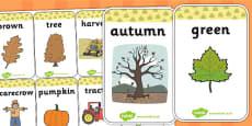 Autumn Flash Cards