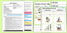 Bean Planting Activity EYFS Adult Input Plan and Resource Pack to Support Teaching on Jasper's Beanstalk